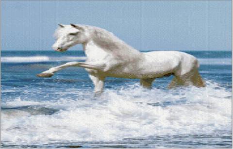 &#171;Белая лошадка у моря&#187;</div><!-- .featured-header-image -->  <div class=