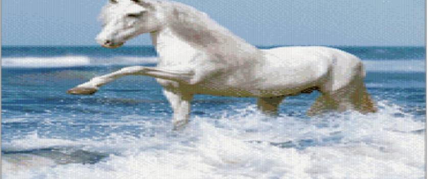 «Белая лошадка у моря»