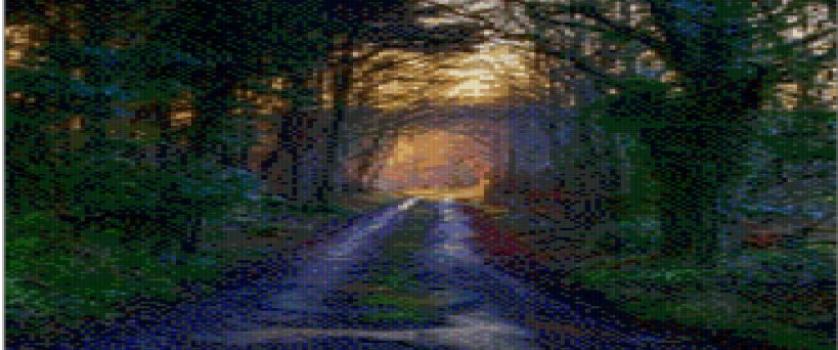 «Дорога»
