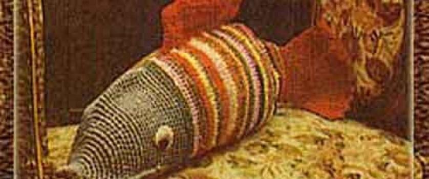 Диванная подушка «Рыба»