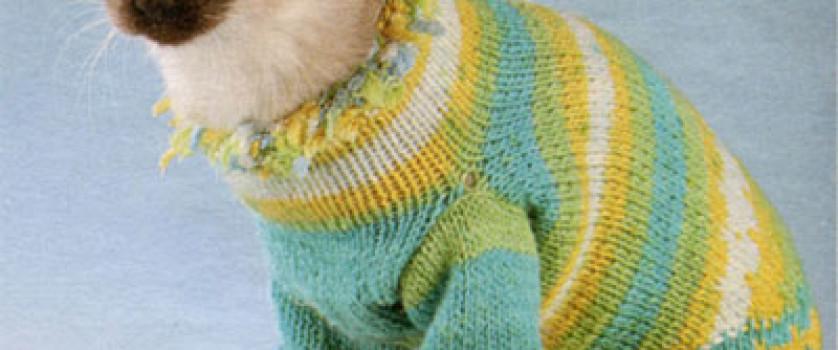 Желто-голубой свитер